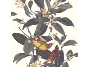 Papel pintado Saint Honoré 2020 1400-4929